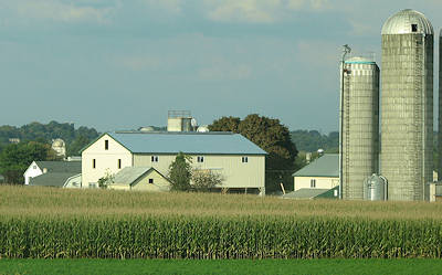 New Amish Barn, Only 8 Days After a Barn Fire