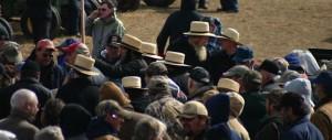 Mud sale crowd