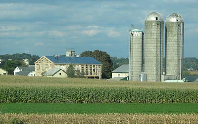 Amish Barn Raising image 5