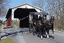 AAA Buggy Rides - Lancaster, PA