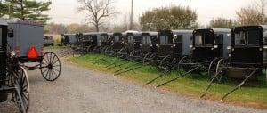 Amish buggies at a wedding