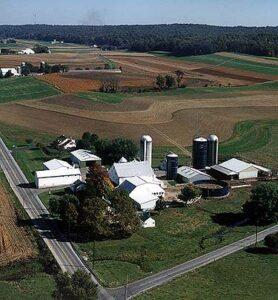 Neffdale Farm