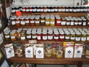 Lil Counry Store & Miniature Horse Farm