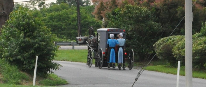 Amish Rollerblading Behind Buggy