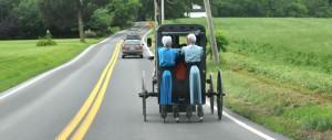 Amish Rollerblading Behind Buggy