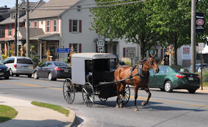 Amish buggy in Intercourse, PA