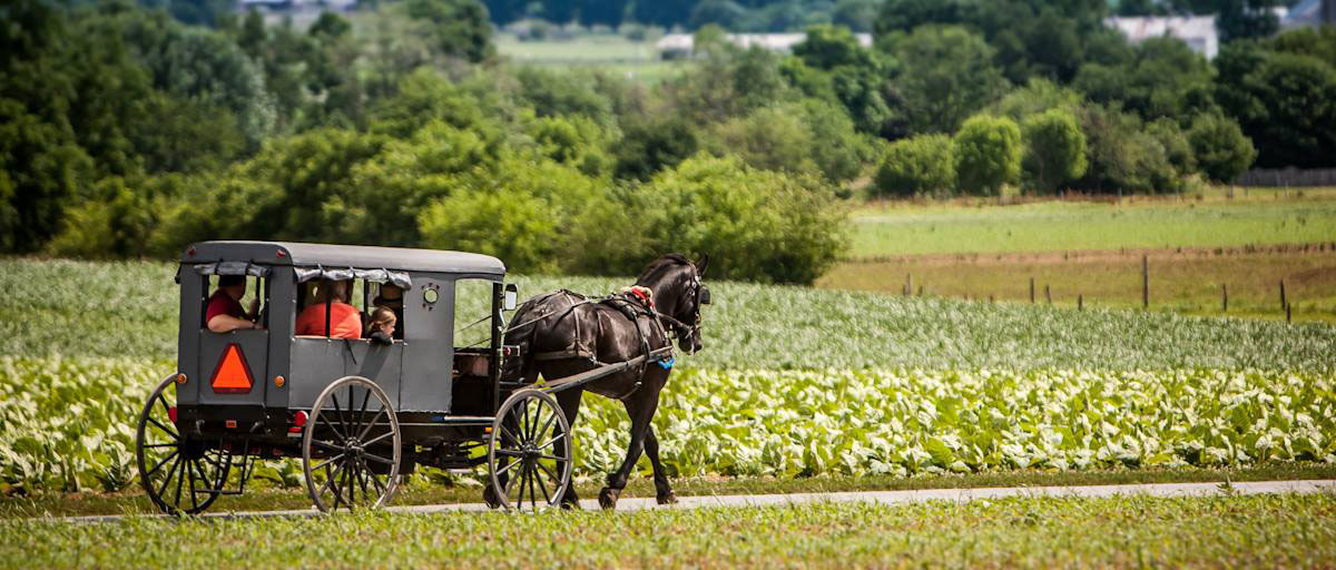 Lancaster County Tours Amish