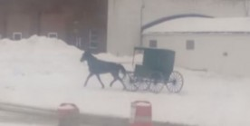 Amish Buggy Doing Donuts in Snow