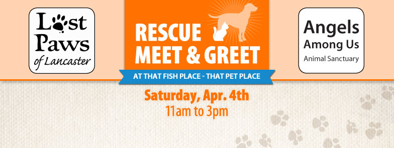 Event lost paws of lancaster angels among us meet and for That fish place that pet place lancaster pa