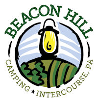 Beacon Hill Camping