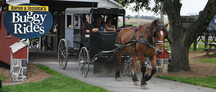 Amish Attractions in Lancaster PA 2018 List Amish Farms Buggy