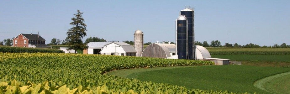Lancaster Tobacco Farm