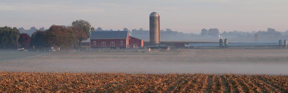 Lancaster Foggy Farmland