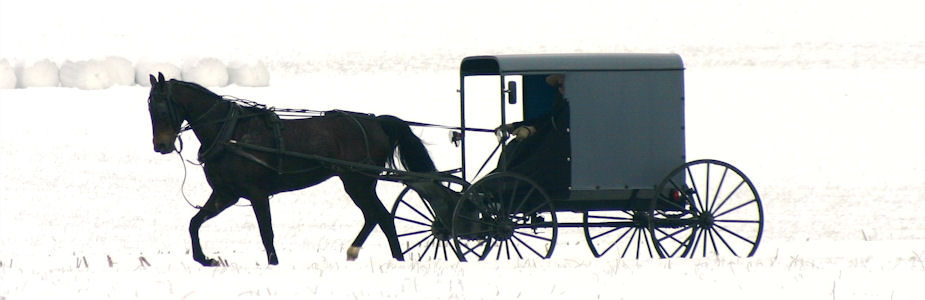 Buggy Passing In Snow