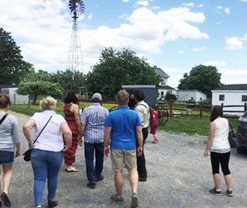Old Windmill Farm - farm tour