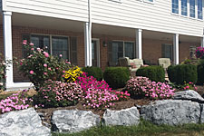 Lancaster Bed And Breakfast Dog Friendly