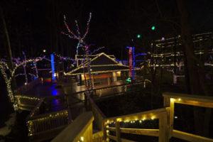 refreshing-mountain-christmas-lights-2