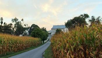 Amish Farm Stay - Lancaster, PA Farm Bed & Breakfasts