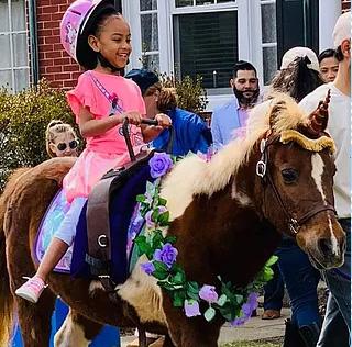 Chateau Farms Pony Rides