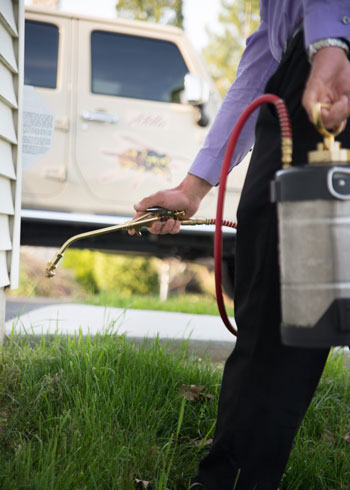 Akita Pest Control - Lancaster, PA