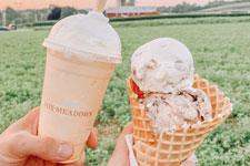 Fox Meadows Creamery - Ephrata, PA