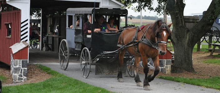 Things to do in Lancaster, PA with kids - Amish Buggy Rides